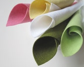 100% Wool Felt, Water Lily, Color Story, Felt Sheet Set, 8x12 Inch Sheets, Child Safe Felt, DIY Craft Supply, Felt Fabric, Merino Wool Felt