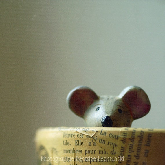 """Mouse photography .""""A mouse... """"Fine art photography print. 8x8 inches (20x20 cm)"""