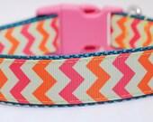 Pink Chevron Dog Collar / Orange, Pink, Yellow Chevron Stripe / Custom Dog Collar