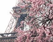 Ready to Ship, Paris Photography, Paris Je t'aime, Paris in the Springtime, Pink Cherry Blossoms Eiffel Tower, Paris Home Decor - Blush Pink