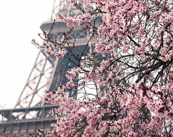 Paris Photography, Paris Je t'aime, Paris in the Springtime, Pink Cherry Blossoms Eiffel Tower, Paris Home Decor, Blush Pink, Paris in Bloom