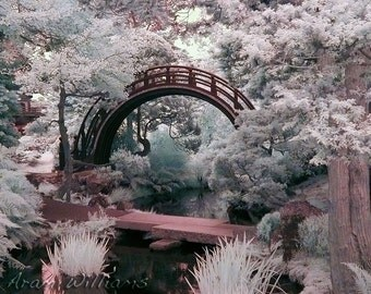 Japanese Garden Bridge - Infrared Photograph - 8.5 x 11