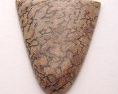 Rare Butterscotch Dinosaur Bone Cabochon