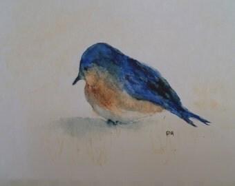Watercolor Bluebird Print by Rustysecrets