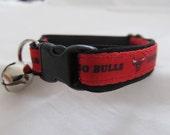 Chicago Bulls Cat  or Small Dog Collar