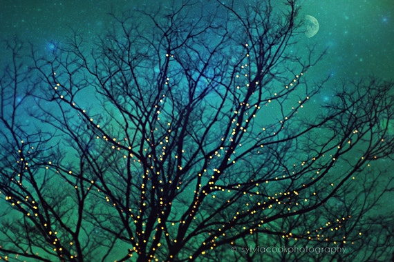 """Nature photograph """"Magical night"""" twinkle lights,tree branches,night photography, turquoise, aqua, home decor, fantasy"""