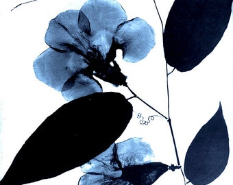 Antique Botanical Print - Blue Leaf and Curl - Blue and White Silhouette Photo - Cyanotype Elegant Floral Print Woodland Forest