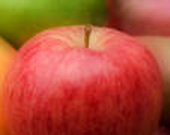 1 oz Red Apple Fragrance Oil