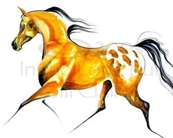 Buckskin Appaloosa Horse Art Painting Print Jill Claire Original