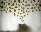 The Star Bringer