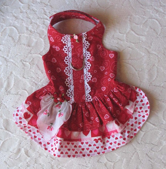 cat harness valentines day dress