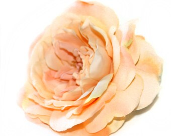 1 Large Perfectly Peach Sophia Rose - Orange Accents - Artificial Flower, Silk Flower Heads PRE-ORDER