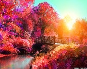 Art photography nature, stars, spring flowers, sunrise sunburst, bridge, water, pink, purple, pastel colors, 16x20""