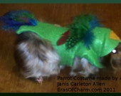 PDF Pattern  to make -- Parrot Themed  dress up clothes costume for Cavy, Guinea pig Hamster