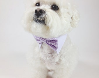 Dog bow tie and shirt collar-  matte satin bow tie and gingham shirt collar- wedding dog clothing- formal wear for dogs
