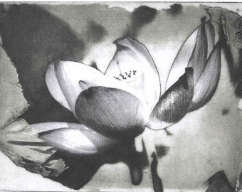 Black and white Lotus Giclee print on watercolor paper