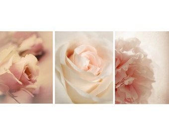Set of Pink Flowers - set of 3 - pale pink flowers - 20% Off - pink flower photography - nursery photos 8x10