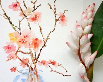 Cherry Blossoms Watercolor, Fine Art Print 8.5x11, Watercolor Flowers