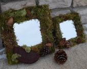 Two Square Mossy Mirrors (pine cone, acorn, dried mushroom)