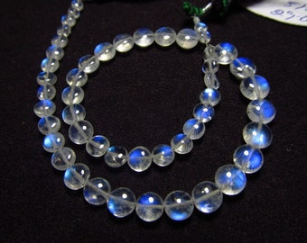 Awesome - AAAAA - High Quality So Gorgeous - Rainbow Moonstone - Smooth Polished Coin Briolett Full Blue Fire Clear size 3 - 7 mm - 51 pcs