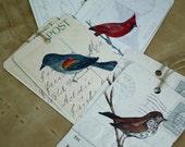 8 Gift Tags, Bird Assortment of Hummingbird, Red-Wing Blackbird, Cardinal, Thrush, Recycled Set of 8