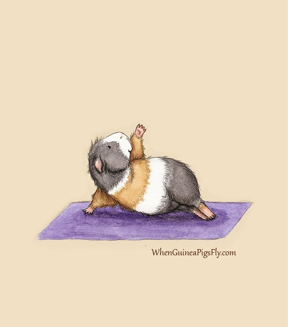 Side Plank - Yoguineas Collection - Cute Guinea Pig Yoga Art Print