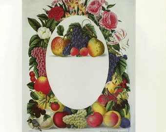 CLEARANCE Prestele Fruit Flowers Print