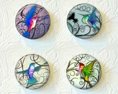 Hummingbird Magnets, Colorful Hummingbird, Kitchen Magnets, Refrigerator Magnets,Magnet Set, Nature Magnets, Buy 3 Sets Get 1 Set Free 057M