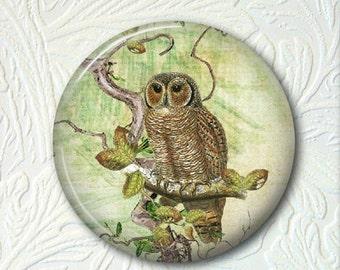 Pocket Mirror  Owl  Buy 3 get 1 Free  009
