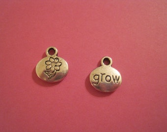 last Set of 15 antique silver double sided grow charms