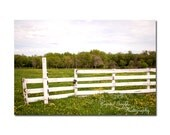 Fence Decor Wooden Rustic Photography Home Decor Interior Design Fence Green Pastures Dandelions Farmyard Scenery