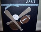 Little Sports Fanatic