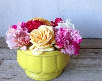 Vintage Floraline Pottery, Number 576
