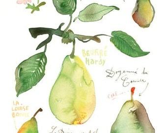 Pear print - Kitchen art poster - Watercolor fruit illustration - Green botanical wall decor - Watercolor painting - Food art - Green decor