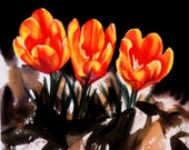 Watercolor flower painting original fine art crocus tulip spring Orange Yellow Daily Painting 6 x 6