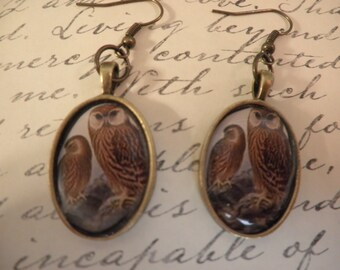 Sale Owls Earrings