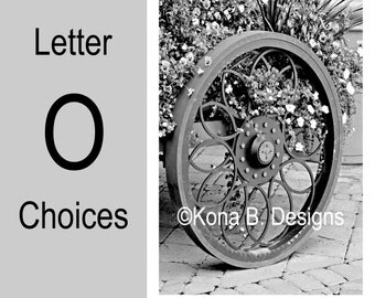 Letter O  -  Alphabet Photography  -  4x6 Photo Letter -  Unframed - Black and White or Sepia