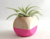 Geometric Air Plant Cube Planter // Neon Pink (with Air Plant)
