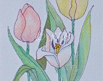 Pastel Tulips Art Print from Original Watercolor
