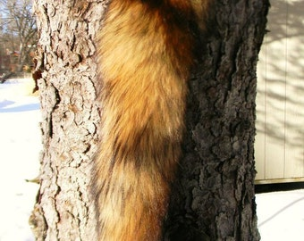 Natural, Beautiful Red Fox Tail w Buckskin Tie : for Dance, Ceremony, Totem
