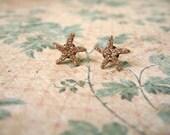 Sea Star Earring, Button Earrings, Sea Shell Post Earrings