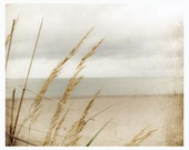 Seaside photograph - In the Wind - photography of bent in beige tones - shabby chic wall decor - sandy beach and sky