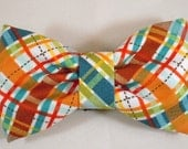 Dog Bow Tie or Flower - Lil' Biasplaid