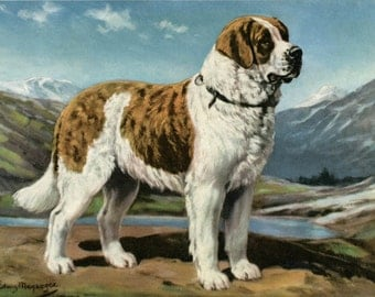 St Bernard Dog Vintage Illustration Edwin Megargee 1940s Dog Print Art Saint Bernard