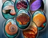 Sea Shells - 30x40 and 22x30 mm ovals - Digital Collage Sheet CG-629 - for Jewelry, Crafts
