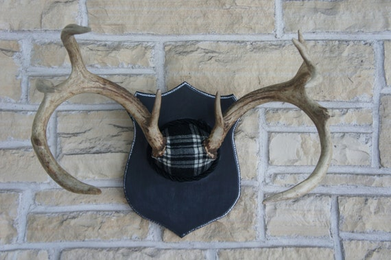 Vintage Deer Antler Mount with Chalkboard Paint and Black Plaid Unique Taxidermy Woodland Wall Art