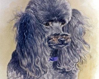 Poodle Art Print, Poodle Portrait Print, Gray Poodle Art, Poodle Watercolor Print, Dog Art Print from Original Painting by P. Tarlow
