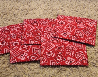 Party Favors-Reusable Sandwich Bags-Red Bandana