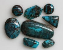 Turquoise Stabilized Bisbee - Medium to  High Grade