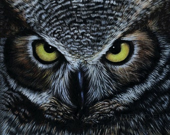 Owl, Paper PRINT, Wild Bird, Night Bird, Yellow Eyes, Realistic Drawing, Black, Feather, Wild Life, Fathers Day
